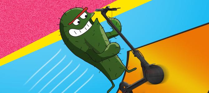 Sukces wakacyjnego konkursu z Kaktusem